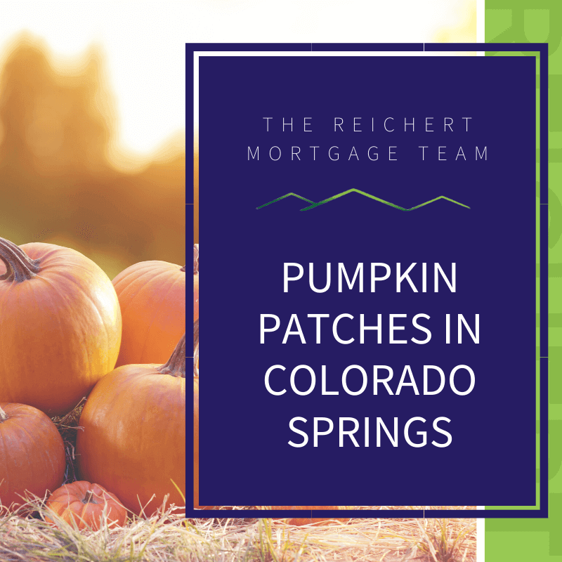Reichert Mortgage blog image post with title 'Pumpkin patches in Colorado Springs' and images of pumpkins during sunset
